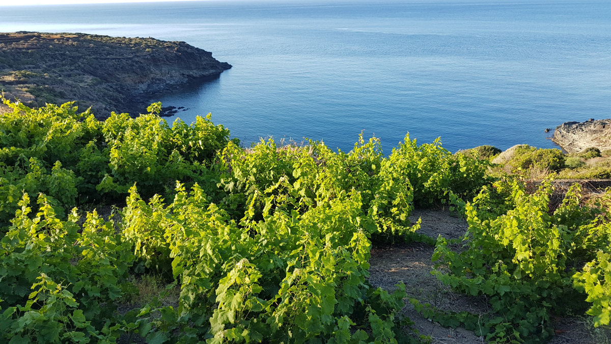mare a pantelleria