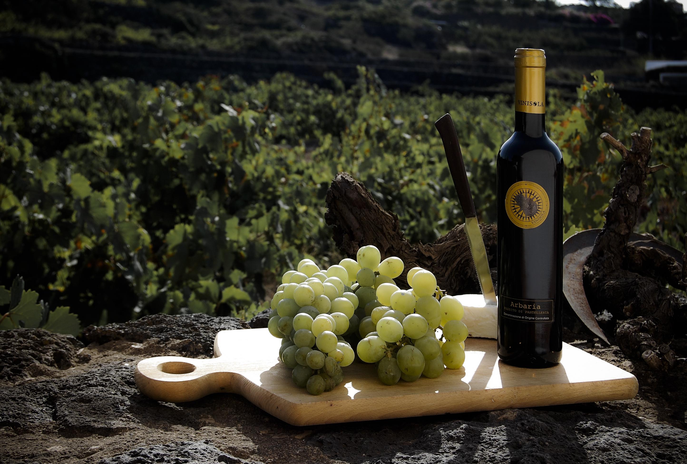 vigneto pantelleria