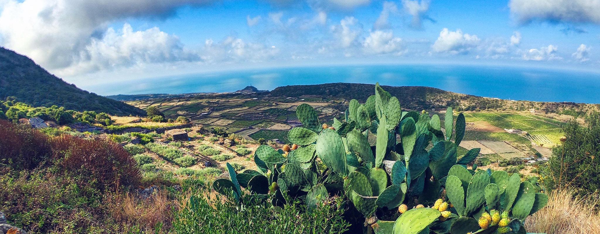 paesaggio pantelleria